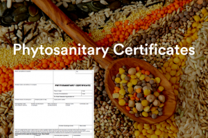 A Phytosanitary Certificate document used for export